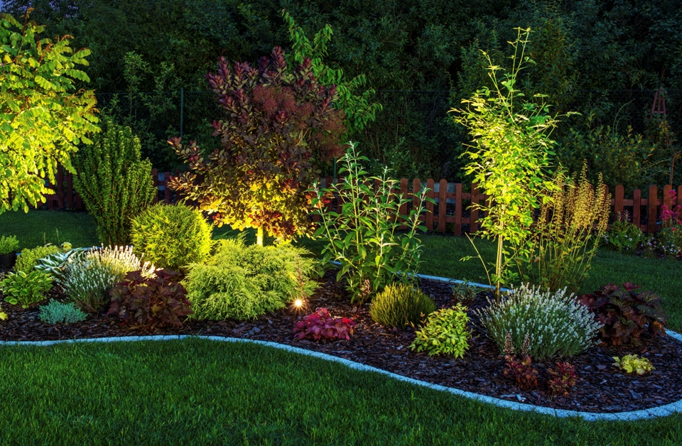 LED Retro Fit: A Glowing Trend in Landscape Design